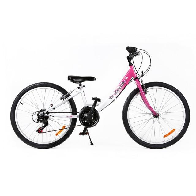 Bicicleta MTB Passati Skyride 24