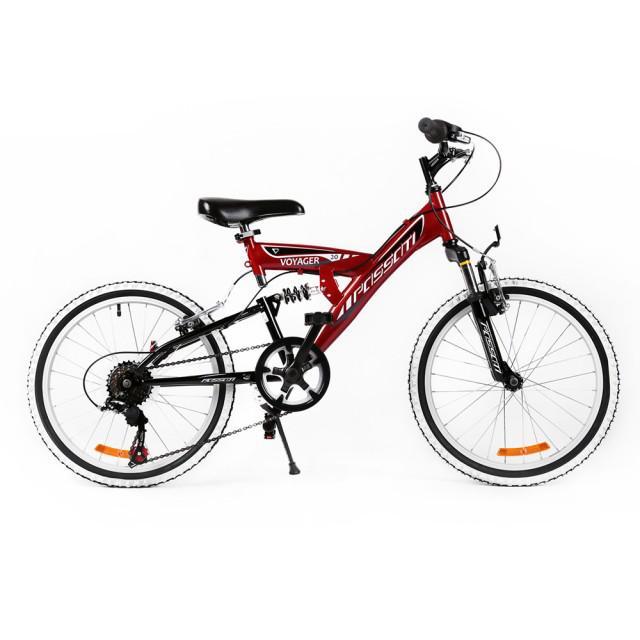 Bicicleta MTB Passati Voyager 20