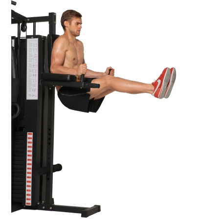 Aparat multifunctional fitness Orion Classic L315