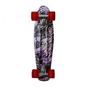 Penny board Sporter wt1908-c1